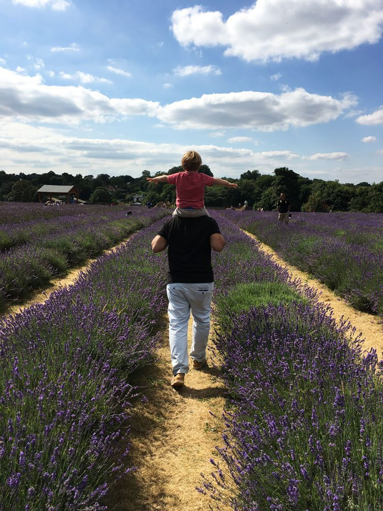 boys-mayfield-lavender-farm-uk