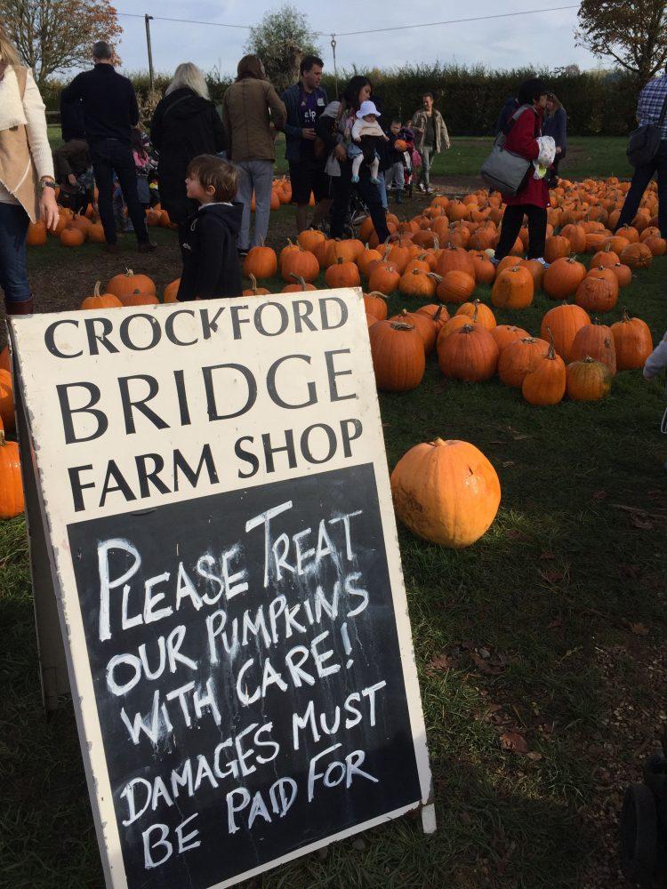 crockford-bridge-farm-londres