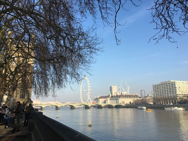 vista-londoneye-londres