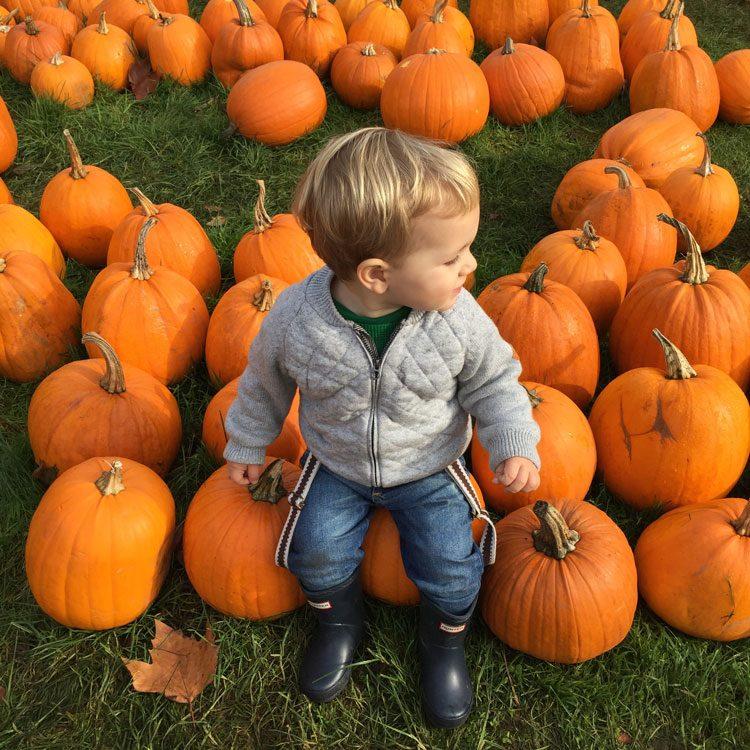 criancas-fazenda-crockford-aboboras