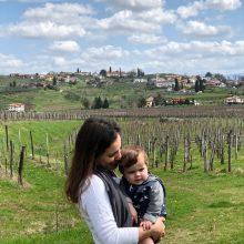 Degustando os vinhos eslovenos!