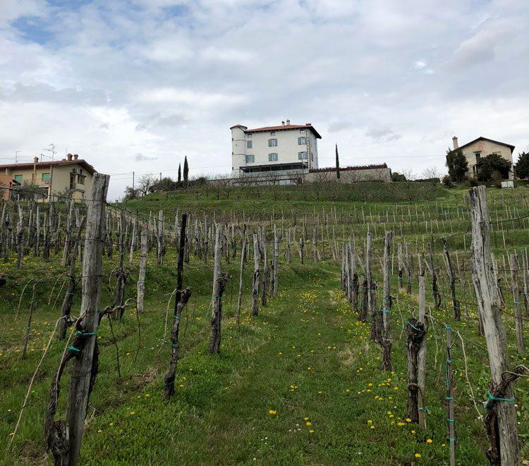 hotel-gredic-vinicolas-eslovenia