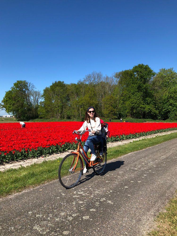 bike-tour-tulipas-holanda