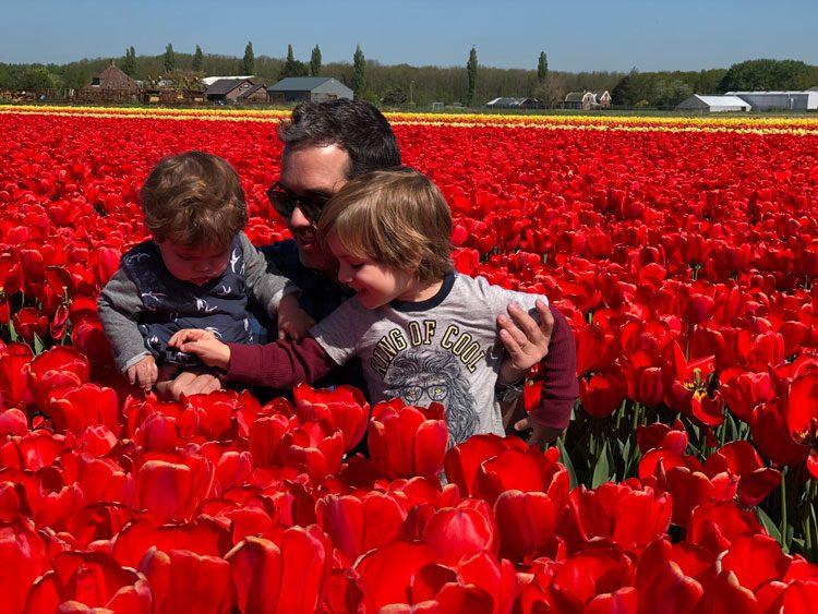 tulipas-vermelhas-holanda