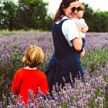 Hitchin – Lavender farm near London!